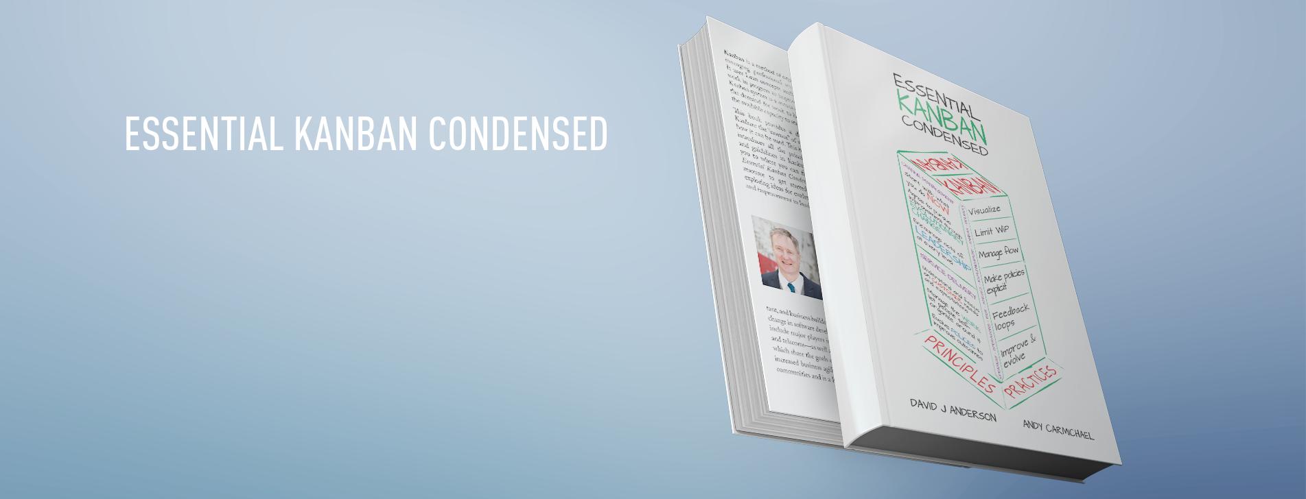 Written book translation Essential Kanban Condensed