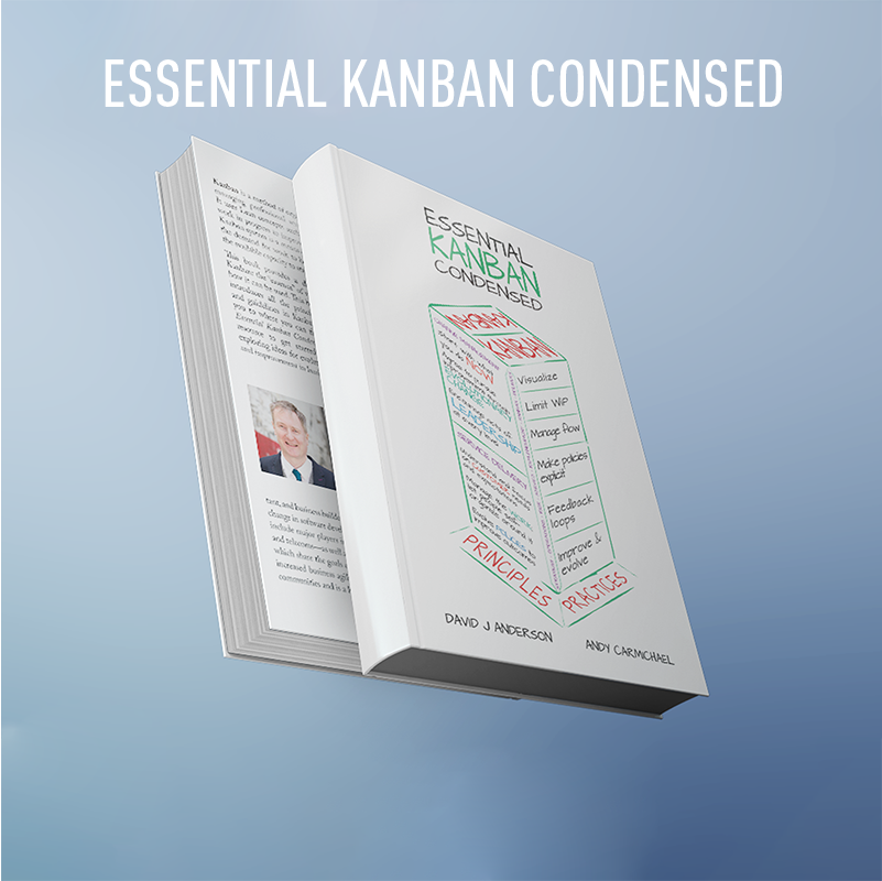 Written book translation Essential Kanban Condensed